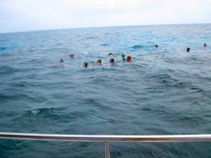 snorkeling fort lauderdale group in water activity