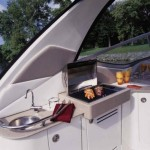 33-foot-SeaRay-Sundancer-bbq activity