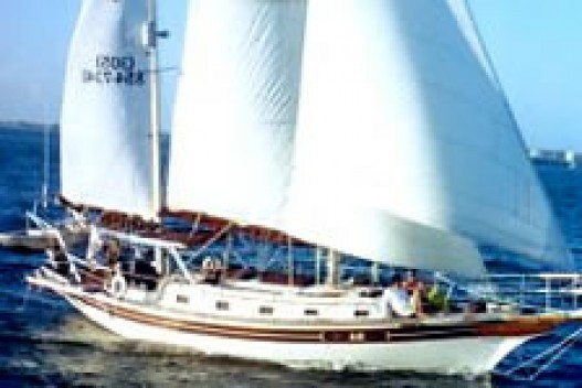 46-foot sailing yacht wind blowing sail